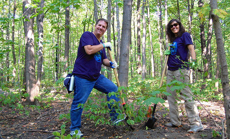 Domtar and SCA help restore urban forest